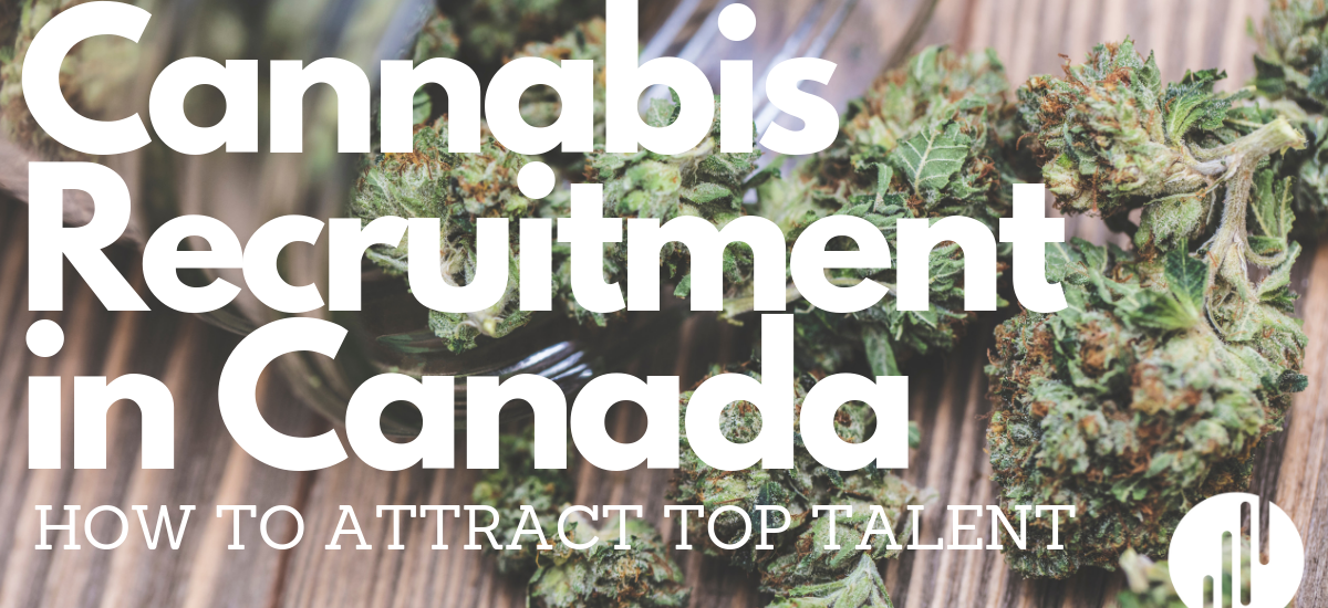 Cannabis Recruitment Canada: How to Attract Top Talent