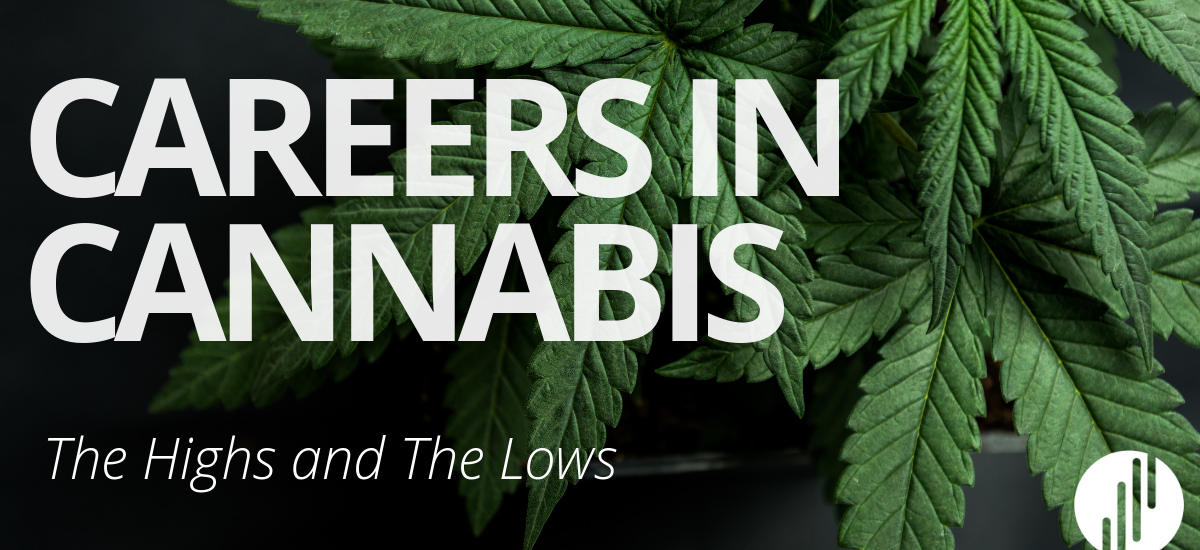 Careers in Cannabis: The Highs and The Lows